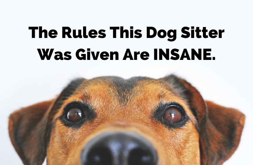 Have You Worked Jobs with Ridiculous Rules?